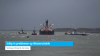 Schip in problemen op Westerschelde (video)